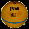 Logo Drohn Ballfabrik